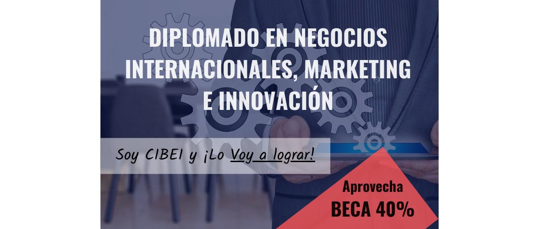 Diplomado en Negocios Internacionales, Marketing e Innovación